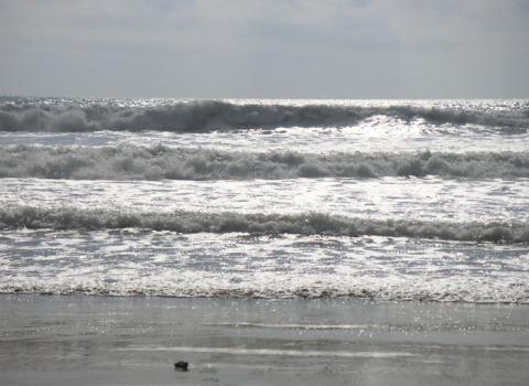 hav1-resize.jpg