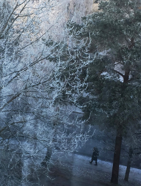 2018-01-10-frost2