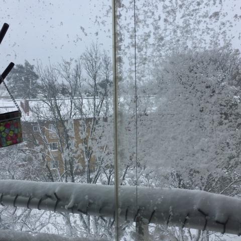 snow1-3febr2018