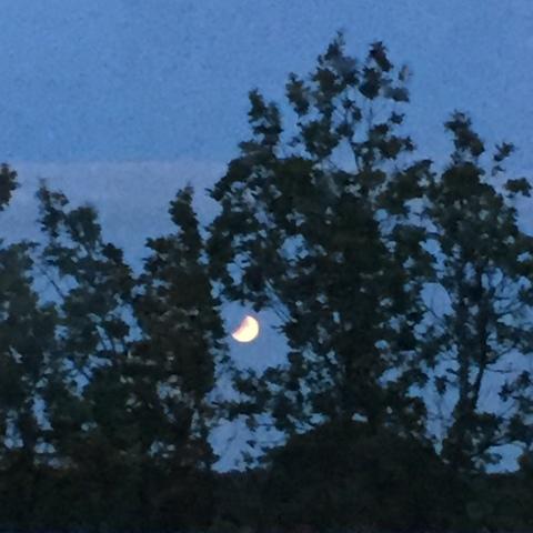 2019-16juli-22.30-fullmåne-månförmörk